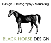 Black Horse Design (West Yorkshire Horse)