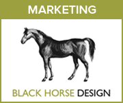 Black Horse Design Marketing (West Yorkshire Horse)