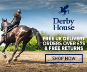 Derby House 2017 (West Yorkshire Horse)