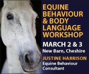 Justine Harrison Workshop March 2019 (West Yorkshire Horse)